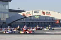THE NEW CATEGORIES OK AND OK JUNIOR MAKE THEIR DEBUT IN THE WSK CHAMPIONS CUP AT THE ADRIA KARTING RACEWAY. THE BRAND-NEW ENGINES TAKE PART – SUCCESSFULLY – IN THE QUALIFYING SESSION OF THE WSK SEASON-OPENER. 216 DRIVERS ARE RACING ON THE ITALIAN TRACK. Gallery