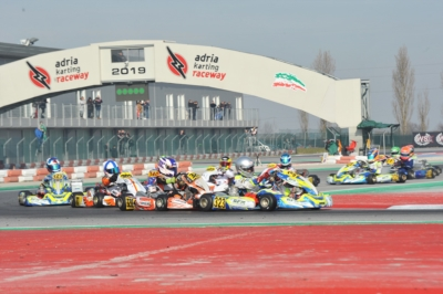 THOMPSON (GB – FA-VORTEX OK), WHARTON (AUS FA-VORTEX OKJ) AND IRFAN (GB – PAROLIN-TM 60MINI) ON TOP IN QUALIFYING OF WSK CHAMPIONS CUP AT THE ADRIA KARTING RACEWAY.