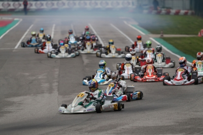 AT THE WSK FINAL CUP IN ADRIA, GOOD QUALIFYING FOR TRAVISANUTTO (I – TONY KART-VORTEX OK), LUYET (CH – CRG-TM KZ2), ANTONELLI (I – KR-IAME OKJ) AND MATVEEV (RUS – ENERGY-TM 60 MINI).