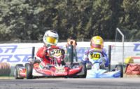 AFTER THE WEEKEND OF LA CONCA, IT IS NOW THE MOMENT TO ANALYZE THE RANKINGS OF WSK EURO SERIES. VERSTAPPEN (NL - CRG-TM KZ1), BARNICOAT (GB – ART GP-TM KF), NEGRO (I – DR-TM KZ2), NORRIS (GB – FA KART-VORTEX KFJ) AND MARTINEZ (E – HERO-LKE 60MINI).