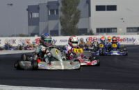 THE POLE-SITTERS OF THE PREFINALS OF THE WSK FINAL CUP ARE ARDIGÒ (I - TONY-VORTEX KZ2), NIELSEN (DK – KOSMIC-VORTEX KF), VARTANYAN (RUS – TONY-VORTEX KFJ) AND BOGDANOV (TONY-LKE 60MINI).
