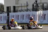 FINAL SPRINT FOR THE WSK CHAMPIONS CUP IN MURO LECCESE (LE), WITH BASZ (PL – KOSMIC-VORTEX KF) AND HAUGER (N - CRG-LKE KFJ) IN POLE POSITION. LUNDGAARD (S – TONY KART-VORTEX-VEGA) GAINED THE BEST RESULTS IN KFJ Gallery