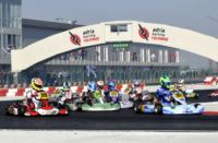 THE ADRIA KARTING RACEWAY HOSTS THE WSK GOLD CUP ON NEXT WEEKEND. GREAT CHALLENGES ON TRACK WITH TOP DRIVERS COMING FROM 4 CONTINENTS