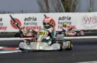 QUALIFYING OVER AT THE WSK GOLD CUP HOSTED BY THE ADRIA KARTING RACEWAY. POLE-POSITIONS FOR THONON (B – PRAGA-PARILLA KZ2), NIELSEN (I - TONY KART-VORTEX KF), LUNDGAARD (DK - TONY KART-VORTEX KFJ) AND HAUGER (N – CRG-LKE 60MINI).
